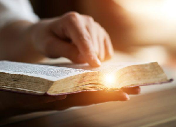 Leia a Bíblia em 1 ano – 130º dia