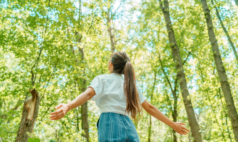 Vamos aprender com a natureza?